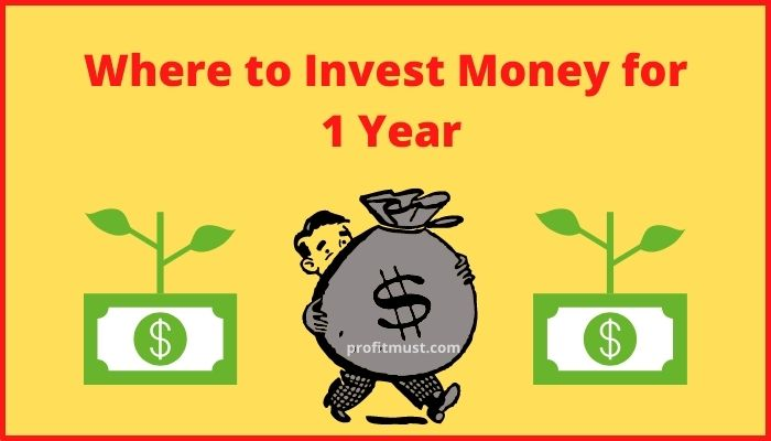 Where to Invest Money for 1 Year
